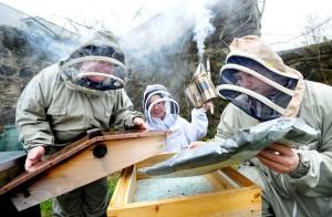 The Scottish Honey and Beeswax Consortium